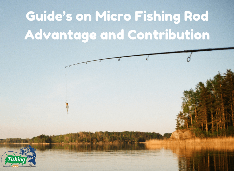 micro-fishing-rod