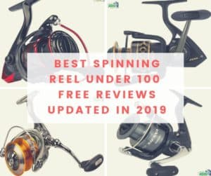 BEST SPINNING REEL UNDER 100 FREE REVIEWS UPDATED IN 2019