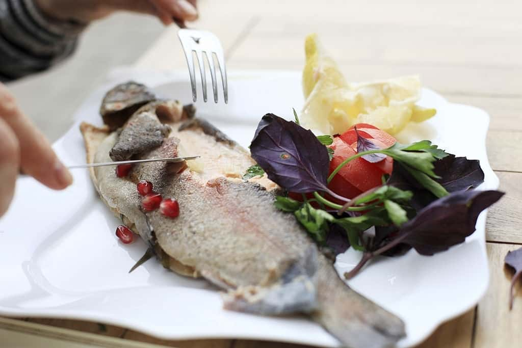 Rainbow Trout Taste- Know the Secrets Before You eat