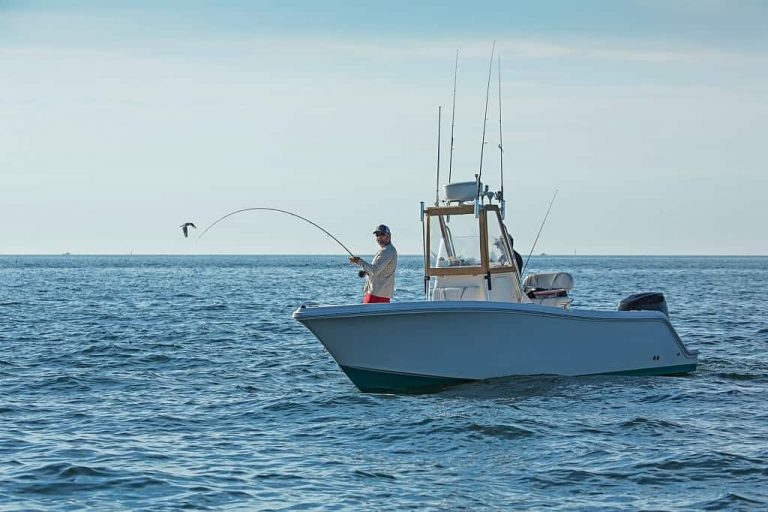 Boston Harbor Fishing Guides: Species, Places and Season